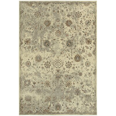 Pheonix Floral Beige/Gray Area Rug Rug Size: Rectangle 53 x 76