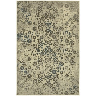 Pheonix Beige/Gray Area Rug Rug Size: Rectangle 53 x 76
