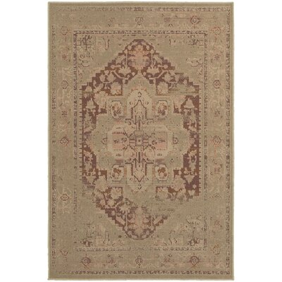 Albertina Beige/Pink Area Rug Rug Size: Rectangle 53 x 76