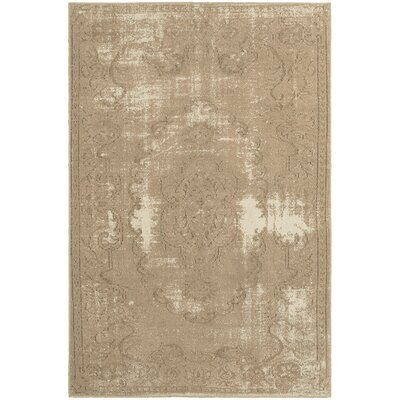 Albertina Tan/Ivory Area Rug Rug Size: Rectangle 53 x 76