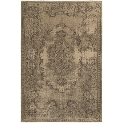 Albertina Tan/Gray Area Rug Rug Size: 53 x 76