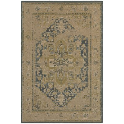 Albertina Tan/Blue Area Rug Rug Size: 53 x 76