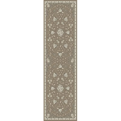 Romola Champagne Floral Bouquets Area Rug Rug Size: 33 x 47