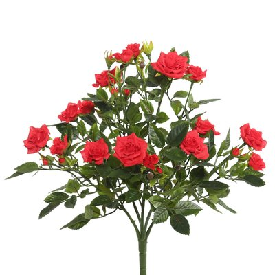 Mini Diamond Roses Bush Stem