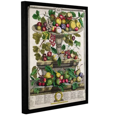 'June from Twelve Months of Fruits' Framed Graphic Art Size: 10