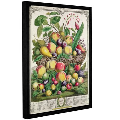 'July from Twelve Months of Fruit' Framed Print Size: 10