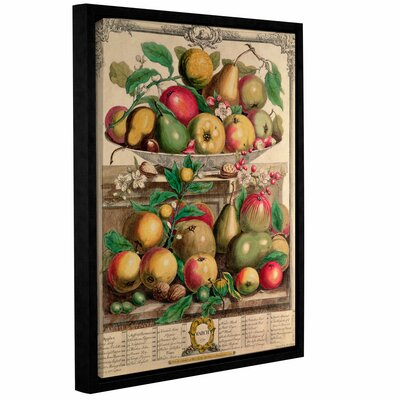'March from Twelve Months of Fruit' Framed Print Size: 10