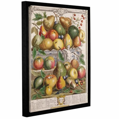 'January from Twelve Months of Fruit' Framed Graphic Art Size: 10