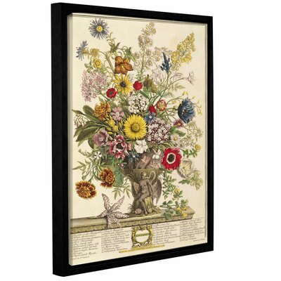 'November from Twelve Months of Flowers' Framed Graphic Art Size: 10