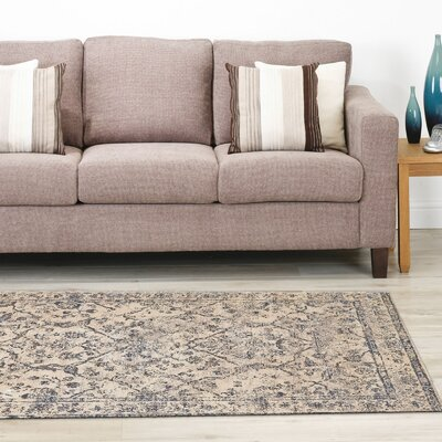 Pavone Gray Area Rug Rug Size: 92 x 122