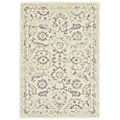 Nadia Cream/Gray Area Rug Rug Size: 5 x 8