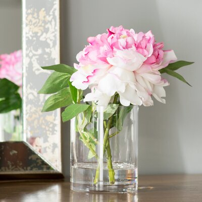 Pink Single Stem Peony in Water Flower Arrangement OPCO2729 39832055