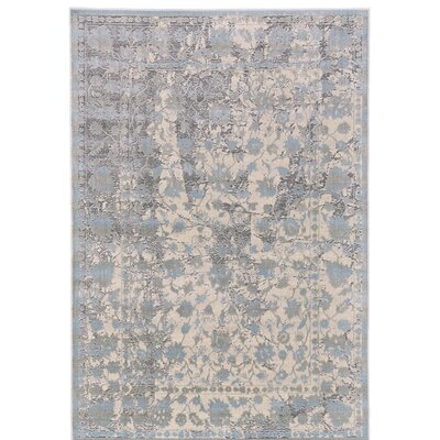 Pavonis Gray/Blue Area Rug Rug Size: Rectangle 8 x 11