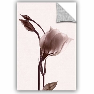 Grace in Simplicity Wall Decal Size: 12