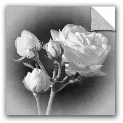 Coming Up Roses Wall Decal Size: 10