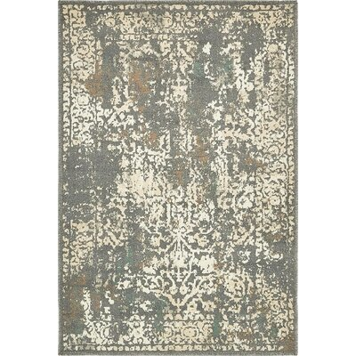 Forcalquier Gray Indoor Area Rug Rug Size: 4 x 6