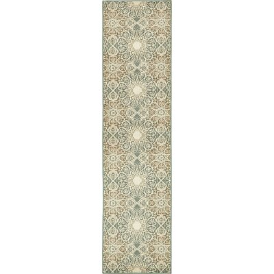 Pauley Multi-Colored Indoor Area Rug Rug Size: Runner 26 x 10
