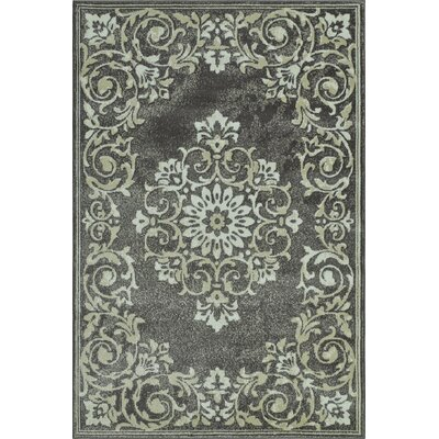Charroux Gray Area Rug Rug Size: Rectangle 4'11