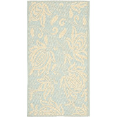 Marcella Aqua/Cream Indoor/Outdoor Rug Rug Size: Rectangle 9 x 12