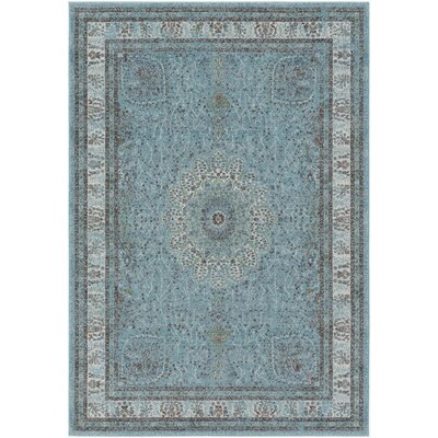 Mekhi Blue Area Rug Rug Size: Rectangle 76 x 106