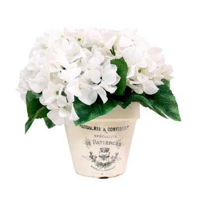 Hydrangea Clay Planter OPCO2728 39832054