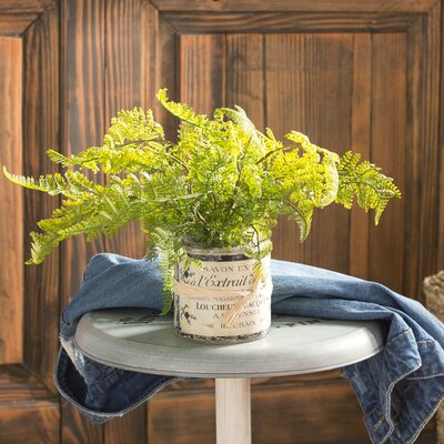 Faux Bracken Fern in French Labeled Pot