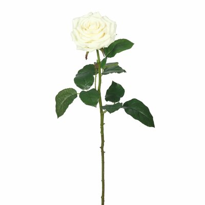Real Touch Rose Stem Flower Color: Cream