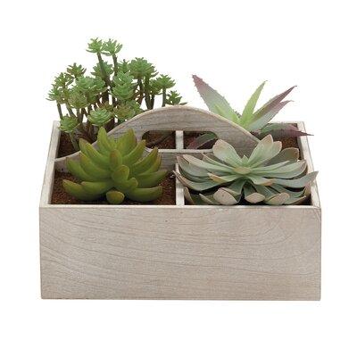 Pot Planter