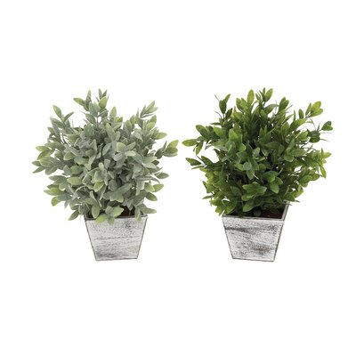 Pot Planter (Set of 2)