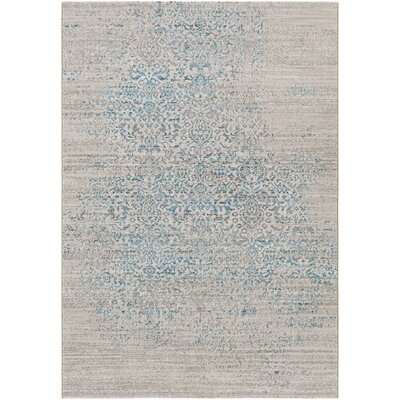 Chesler Blue Area Rug Rug Size: Rectangle 2 x 3