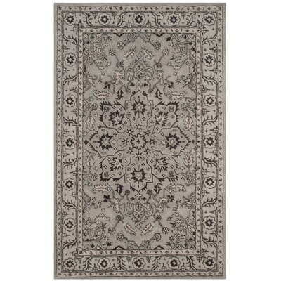 Evans Hand-Tufted Gray/Beige Area Rug COLOR: Grey / Beige, Rug Size: Rectangle 6 x 9