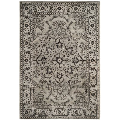 Albert Brook Hand-Tufted Gray/Beige Area Rug COLOR: Grey / Beige, Rug Size: 4' x 6'