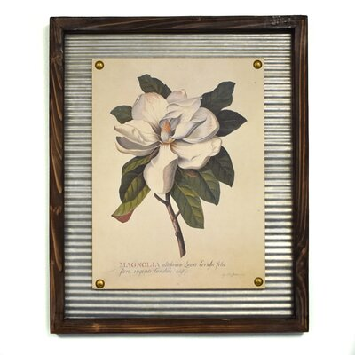 'Blooming Magnolia' Framed Graphic Art Print
