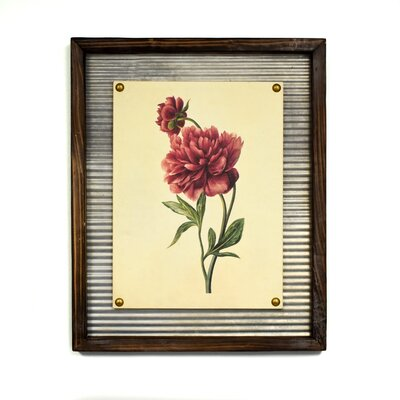 'Rouge Peony' Framed Graphic Art Print