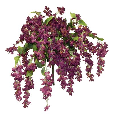 Trailing Bush Wisteria Centerpiece Flower Color: Burgundy