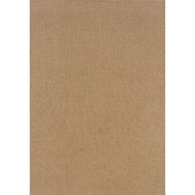 Orris Sand Indoor/Outdoor Area Rug Rug Size: 53 x 76