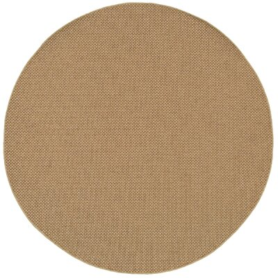 Orris Sand Indoor/Outdoor Area Rug Rug Size: 67 x 91