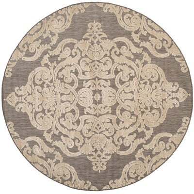 Lievin Taupe Indoor/Outdoor Area Rug Rug Size: Round 67 x 67