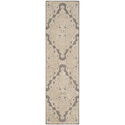 Lievin Taupe Indoor/Outdoor Area Rug Rug Size: Runner 23 x 8