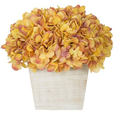 Hydrangea in White-Washed Wood Cube Color: Gold/Burgundy