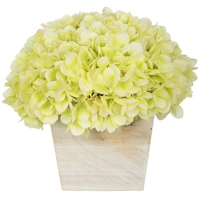 Hydrangea in White-Washed Wood Cube Color: Green