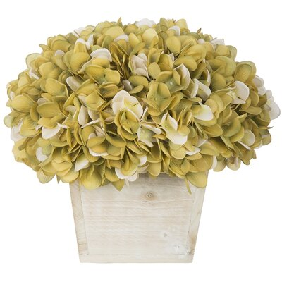 Hydrangea in White-Washed Wood Cube Color: Sage/Cream