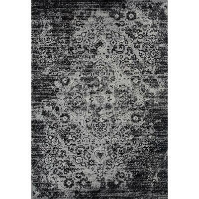 Paden Gray Indoor/Outdoor Area Rug Rug Size: 52 x 72