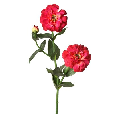 Double Bud Zinnia Stem (Set of 12) Flower Color: Red