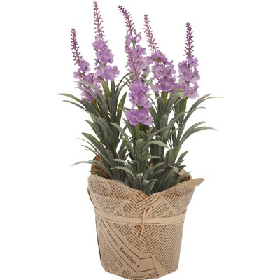 Faux Nepeta (Set of 2)