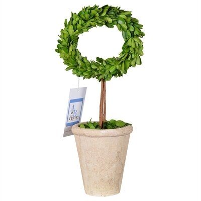 Faux Boxwood Topiary Plant in Planter Size: 14.5