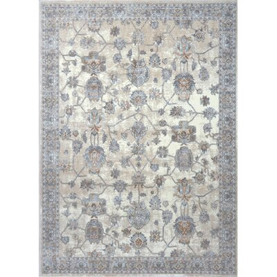 Georgiana White/Gray Area Rug Rug Size: 33 x 43