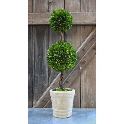 Faux Double Ball Topiary