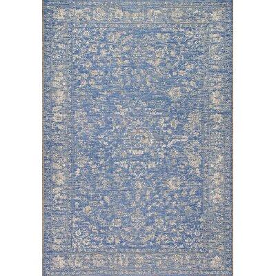 Dunstan Blue Indoor/Outdoor Area Rug Rug Size: 53 x 76