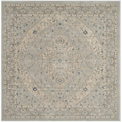 Montelimar Light Gray/Cream Area Rug Rug Size: Square 67